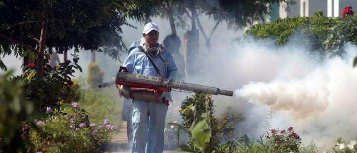 Chikungunya tem expansão rápida no País